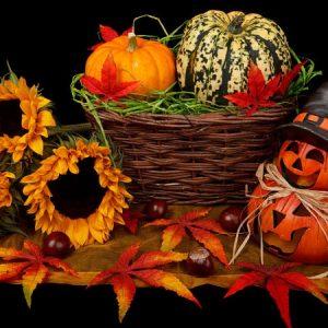 Trang tri hoa halloween