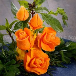 học cắt tỉa hoa rà rốt