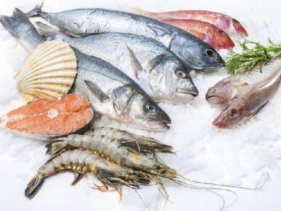 Hải sản thực phẩm tốt cho máu